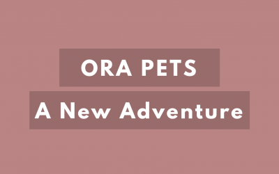 Ora Pets: The Beginning Of A New Adventure