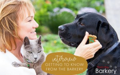BEHIND THE BRAND: Getting To Know From The Barkery