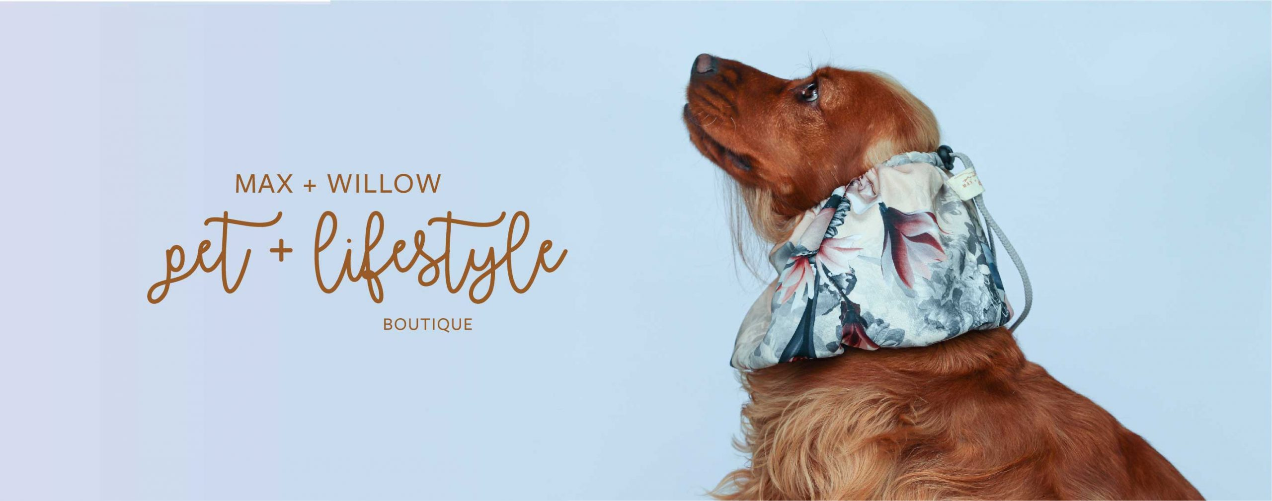 MAX_AND_WILLOW_PET_BOUTIQUE.jpg